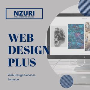 website design package jamaica