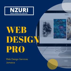 Web development jamaica pro