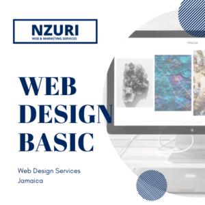 web design package jamaica